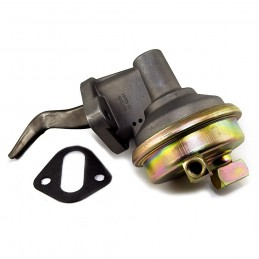Fuel Pump 225 CI, 65-66...