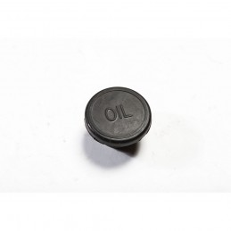 Oil Fill Plug, 258 Cubic Inch