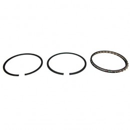 Piston Ring Set .010 87-93...